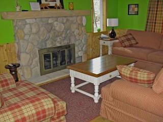 Foxwood in downtown Glen Arbor - Traverse City vacation rentals