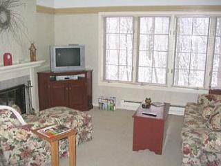 South Village 13 Homestead/Sleeping Bear Dunes - Traverse City vacation rentals