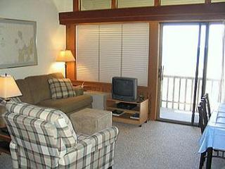 Tall Timbers C5 on Lake Michigan Glen Arbor - Traverse City vacation rentals