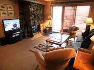 Beautiful 2 BR-2 BA Condo in Aspen (Aspen 2 BR & 2 BA Condo (Lift One - 103 - 2B/2B)) - Aspen vacation rentals
