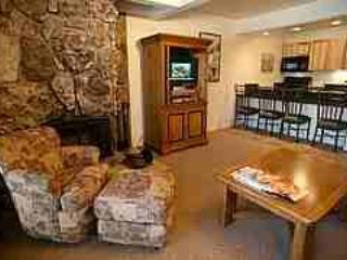 Gorgeous 1 BR & 1 BA Condo in Aspen (Aspen 1 BR & 1 BA Condo (Lift One - 104 - 1B/1B)) - Aspen vacation rentals