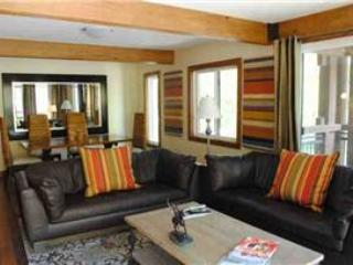 Comfortable 3 Bedroom-3 Bathroom Condo in Aspen (Lift One - 306 - 3B/3B) - Image 1 - Aspen - rentals