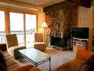 Beautiful 2 Bedroom, 2 Bathroom Condo in Aspen (Aspen 2 Bedroom, 2 Bathroom Condo (Lift One - 407 - 2B/2B)) - Image 1 - Aspen - rentals