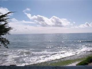 234/Santa Cruz Beach House *PET FRIENDLY/SPACIOUS* - Santa Cruz vacation rentals