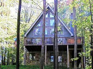 Bearadise - McHenry vacation rentals