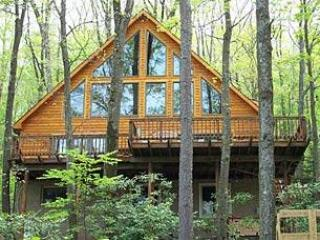 Bearadise Found - McHenry vacation rentals