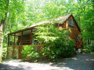 The Pines - McHenry vacation rentals