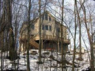 Very Beary Ridge - McHenry vacation rentals