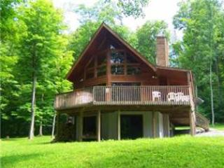 Bear Valley Lodge - McHenry vacation rentals