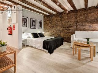 Cometa Apartment, Cosy studio in the old town - Barcelona vacation rentals