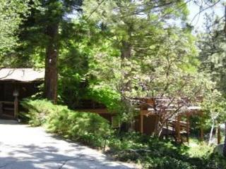 Oak View - Idyllwild vacation rentals