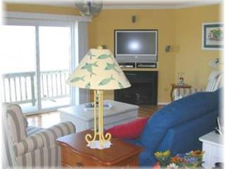 Sunny Shack - Virginia vacation rentals