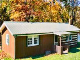 A Cabin on the River - West Jefferson vacation rentals