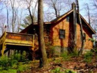 Cabin Fever - West Jefferson vacation rentals