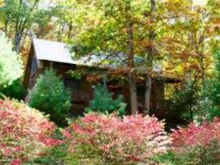 Laurelwood - West Jefferson vacation rentals