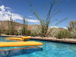 H-A Pool House for Nature Lovers - Palm Springs vacation rentals
