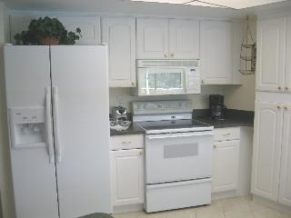 Palm Tree - Cape Coral vacation rentals