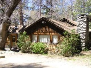 Big Oak Retreat - Idyllwild vacation rentals