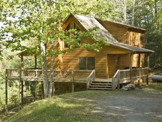 BEAR`S BEST*TWO BEDROOM~TWO BATH~CABIN WITH MOUNTAIN VIEWS~SECLUDED~PET FRIENDLY~WIFI~HOT TUB~PING PONG~JACUZZI TUB~CHARCOAL GRI - Blue Ridge vacation rentals