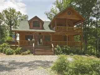 DANCING TREES CABIN*SECLUDED LUXURY AT AN AFFORDABLE PRICE~THREE BEDROOMS~THREE BATHS~HOT TUB~WIFI~JETTED TUB IN MASTER SUITE~GA - Blue Ridge vacation rentals