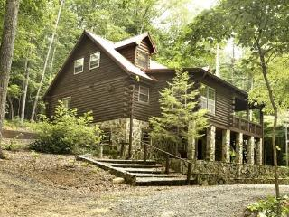 DEER MEADOW*2BR/3BA~SECLUDED CABIN~PRIVATE HOT TUB~CHARCOAL GRILL~FIRE PIT~PING PONG~PET FRIENDLY~SAT TV~WET BAR~WOOD BURNING FI - Blue Ridge vacation rentals