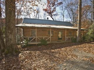 LAUREL CREEK*PRIVATE 2 BDR~2 BATH~KING BEDS AND TV`S IN BEDROOMS~PET FRIENDLY~CREEK~HOT TUB~WOOD BURNING FIREPLACE~WIFI~GAS GRIL - Blue Ridge vacation rentals
