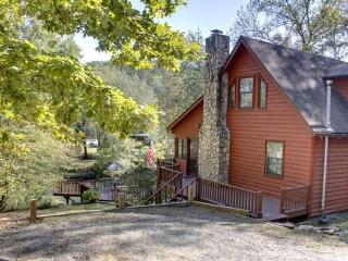 NANNY`S SHANTY*CHARMING 2BR~2BA~ON THE TOCCOA RIVER~POOL TABLE~GAS LOG FIREPLACE~GAZEBO AT THE RIVER~FIRE PIT~GAS GRILL~WIFI~HOT - Blue Ridge vacation rentals