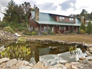 THE BEAR`S DEN*2 BR~2.5 BA~CABIN CONDO NEAR THE TOCCOA RIVER~WIFI~CHARCOAL GRILL~WOODBURNING FIREPLACE~FIRE PIT~COVERED CARPORT~ - Blue Ridge vacation rentals
