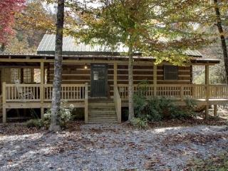 TOCCOA RIVER LOG CABIN*3BR~1BA~AUTHENTIC DOVE TAIL CABIN~ON THE TOCCOA RIVER~GREAT TROUT FISHING~TUBING~CHARCOAL GRILL~WIFI~WOOD - Blue Ridge vacation rentals