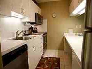 1 Bedroom/1 Bathroom Condo in Aspen (Condo with 1 BR/1 BA in Aspen (Lift One - 409 - 1B/1B)) - Aspen vacation rentals