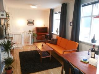 Family Home in Reykjavik city center - Iceland vacation rentals