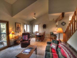 206 Pines - Mountain Area - Steamboat Springs vacation rentals