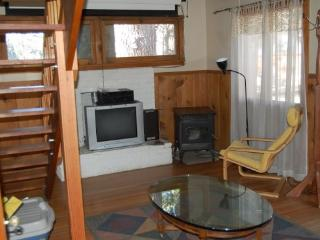 Bleacher Cute Cabin right in Town - Idyllwild vacation rentals