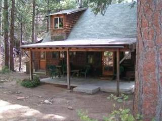 Chamlee - Charming Rustic Cabin with a large flat yard perfect for your four-legged family. - Big Bear and Inland Empire vacation rentals