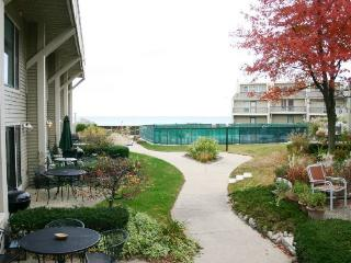Harbours 34 - Weekly stays begin on Saturdays - South Haven vacation rentals