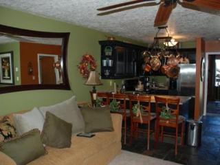 Spacious Two Bedroom condo with Game area for kids - Eden vacation rentals