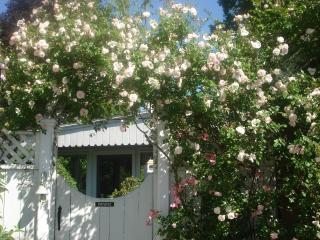 Reed Rose Cottage Suites, Pool & Gardens - Newport vacation rentals