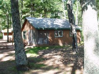 Driftwood Cabin at Estrold Resort - Saint Germain vacation rentals