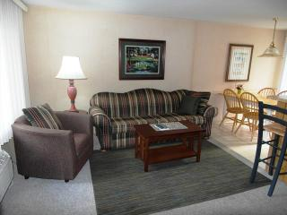 SURFSIDE Condominium Resort 1 Bedroom Lake Huron - Northeast Michigan vacation rentals