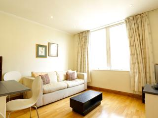 Kensington High Street, (IVY LETTINGS). Fully managed, free wi-fi, discounts available - London vacation rentals