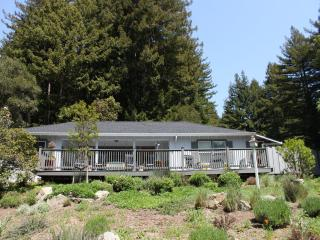 Cottage Nestled in Redwoods with Unique Waterfall - Loma Mar vacation rentals