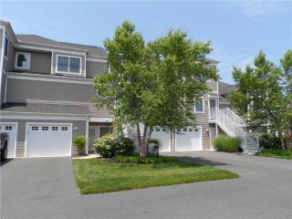 1028 (38211) Lake Drive - Delaware vacation rentals
