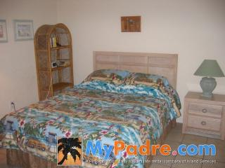 CONTINENTAL #201: 2 BED 1 BATH - South Padre Island vacation rentals
