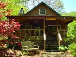 Roaring Creek - West Jefferson vacation rentals
