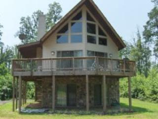 A Lake House - Bumpass vacation rentals