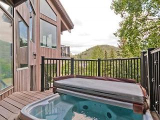 Gorgeous Deer Valley 3+ Bedroom Pinnacle with Great Views & Amenities - Park City vacation rentals