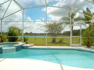 4BR Luxury SF Pool/Free SPA Heat/BBQ/WiFi by Disney - Orlando vacation rentals