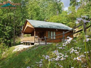 A Tyme to Remember - Bryson City vacation rentals