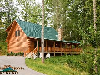 Bear's Way Log Cabin - Bryson City vacation rentals