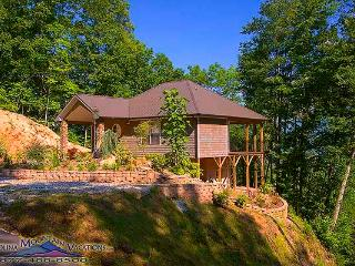 Black Bear Lookout - Bryson City vacation rentals